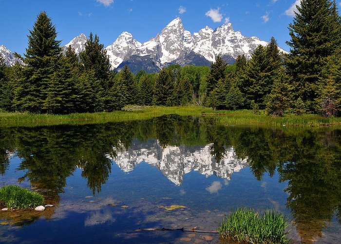 Grand Teton National Park Greeting Card featuring the photograph Teton Reflection by Alan Lenk