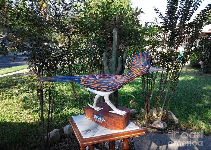 Animal Greeting Card featuring the mixed media TEXAS Roadrunner by Michael Pasko