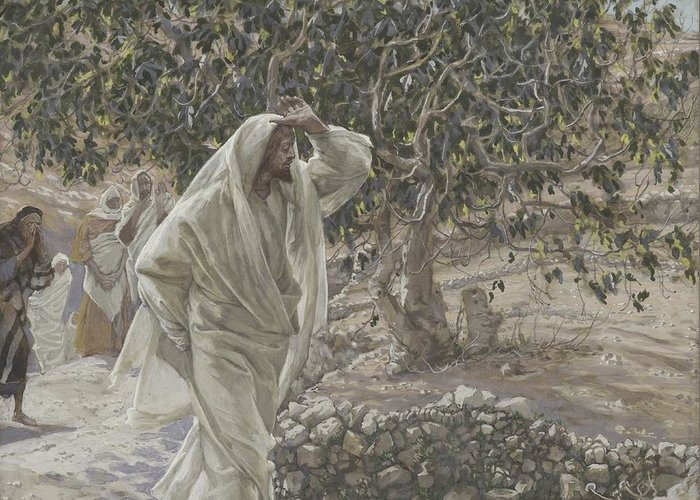 Tissot Greeting Card featuring the painting The Accursed Fig Tree by Tissot