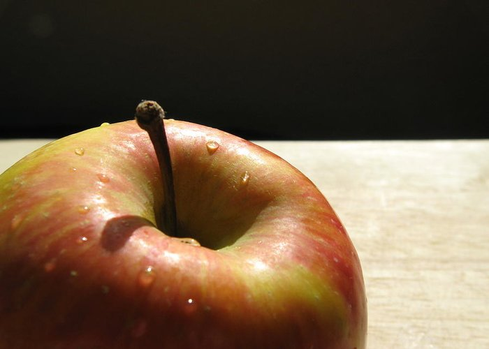 Apple Greeting Card featuring the photograph The Apple Stem by Kim Pascu