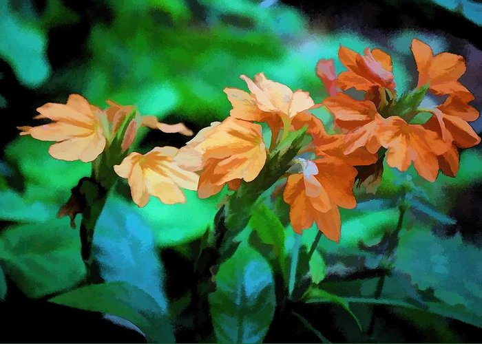Flowers Greeting Card featuring the photograph The Beauty Of Nature by Don and Sheryl Cooper