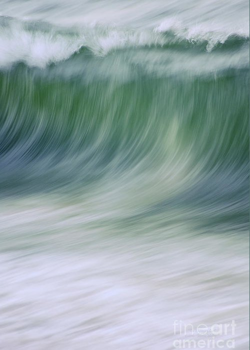 Waves Greeting Card featuring the photograph The Beginning Curl by Jeanne McGee