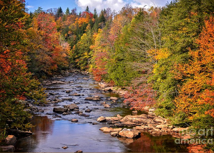 Blackwater Falls State Park Greeting Card featuring the photograph The Blackwater River In Autumn Color by Cynthia Staley