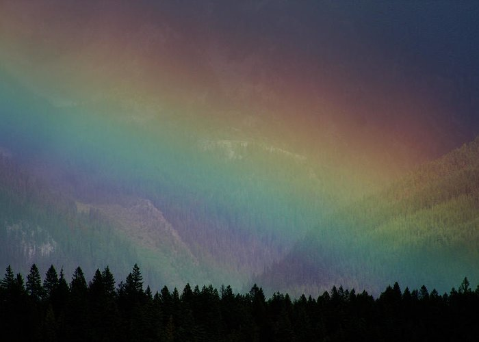 The Promise Greeting Card featuring the photograph The Covenant by Cathie Douglas