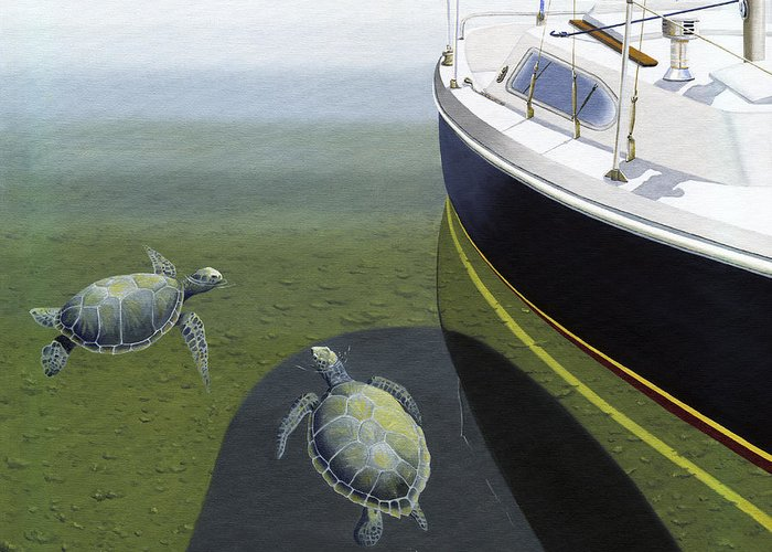Sail Boat Greeting Card featuring the painting The Curiosity Of Sea Turtles by Gary Giacomelli