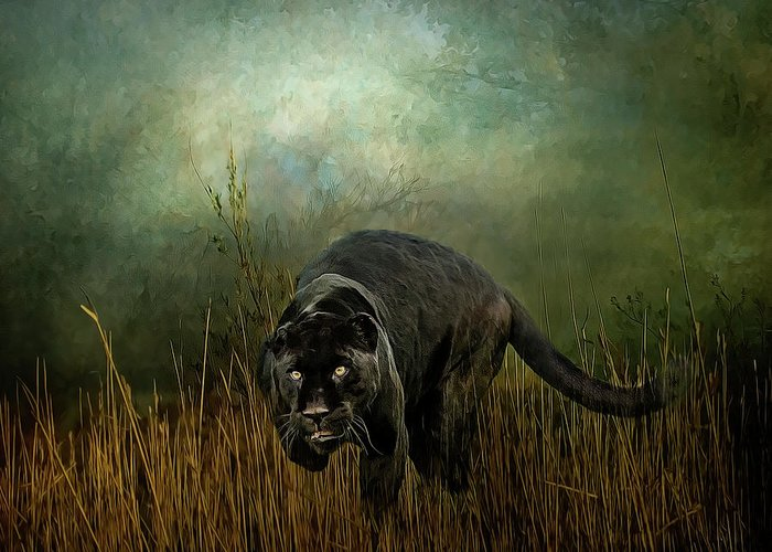 Jaguar Greeting Card featuring the photograph The Dark Destroyer by Brian Tarr