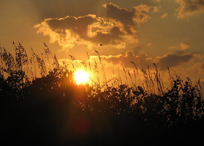 The Dawning Of A New Day''' Greeting Card featuring the photograph The Dawning by Tyrone Spann