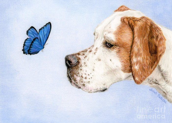 Dog And Butterfly Greeting Cards