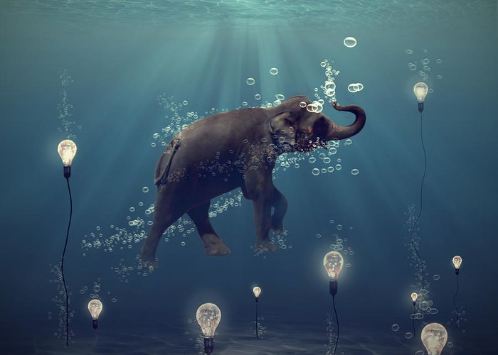Elephant Digital Art Greeting Cards