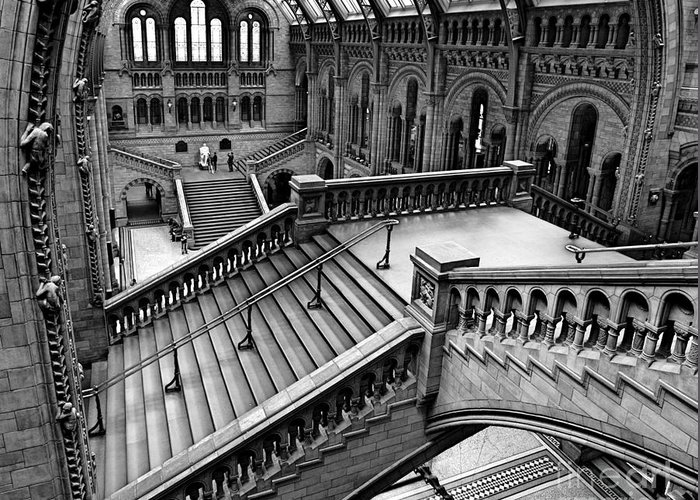 Natural Greeting Card featuring the photograph The Escher View by Martin Williams