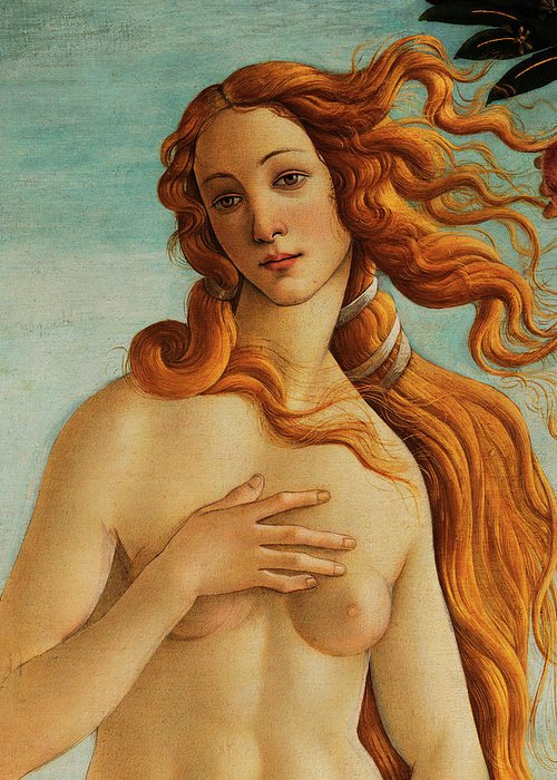 Face Of Venus Greeting Card featuring the painting The Face Of Venus by Sandro Botticelli
