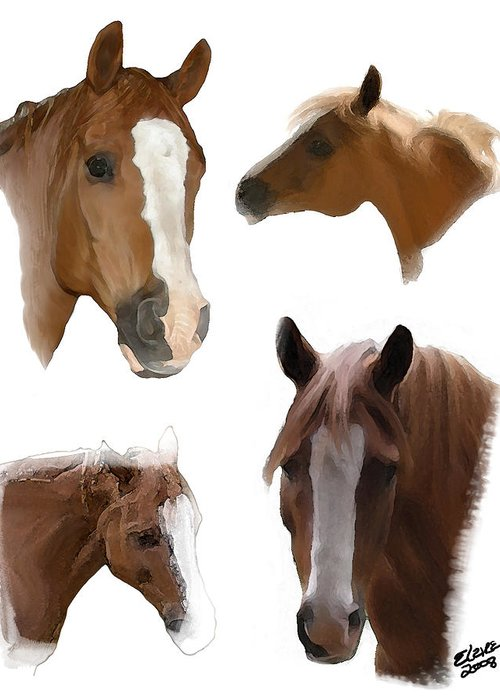 Arabian Horse Greeting Card featuring the painting The Faces of T by Elzire S