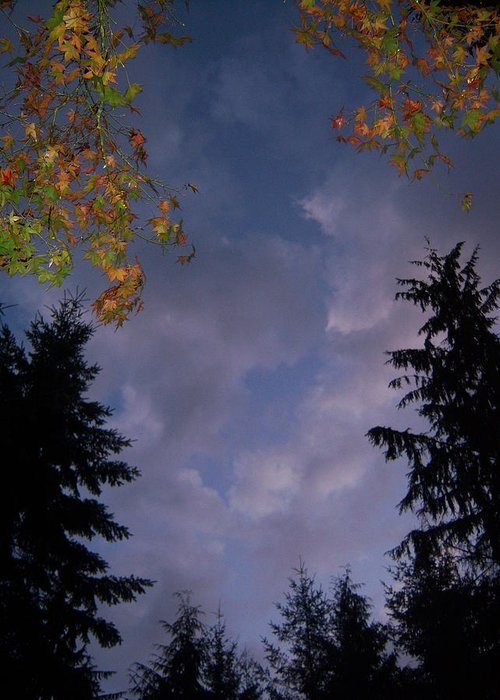 Autumn Greeting Card featuring the photograph The Fall Evening Sky by Ken Day