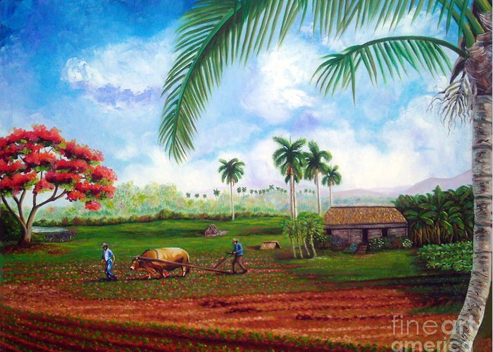 Cuban Art Greeting Card featuring the painting The Farm by Jose Manuel Abraham