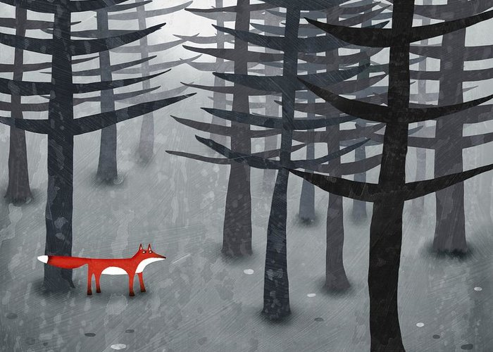Gray Fox Greeting Cards