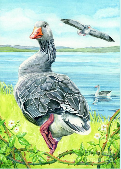 Celts Greeting Card featuring the painting The Goose by Antony Galbraith