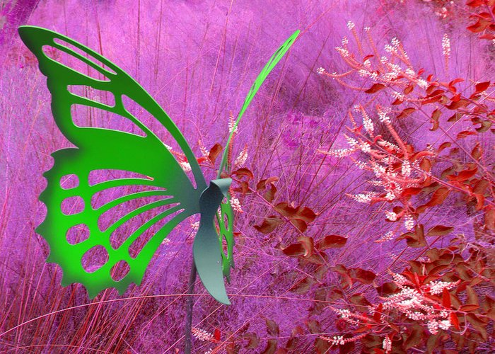 Butterflies Greeting Card featuring the photograph The Green Butterfly by Rosalie Scanlon