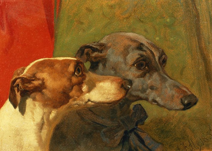 Greyhound; Dog; Ribbon; Bow; Dogs; Charlie; Pet; Racing; Levrier; Levriers Greeting Card featuring the painting The Greyhounds Charley And Jimmy In An Interior by John Frederick Herring Snr