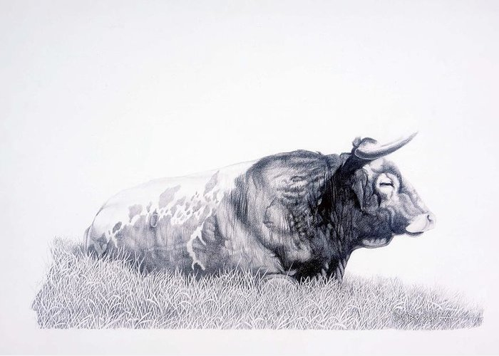Longhorn Greeting Card featuring the drawing The Herdmaster by Howard Dubois