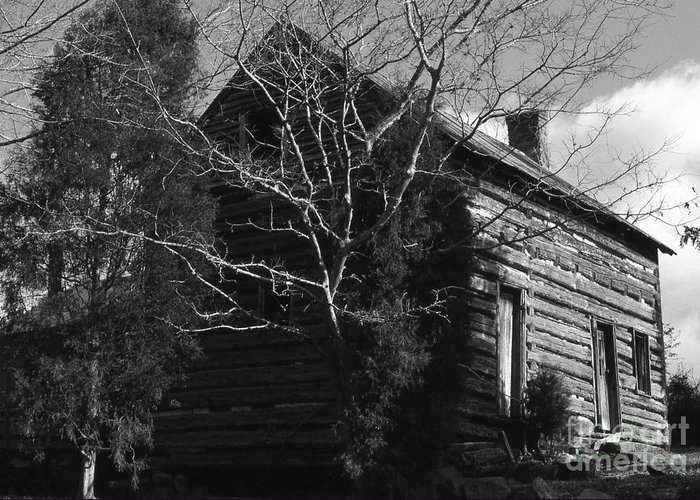 Cabins Greeting Card featuring the photograph The Homestead by Richard Rizzo