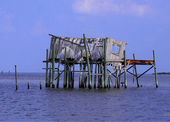 Cedar Key Greeting Card featuring the photograph The Honey Moon Suite 3 - Debbie May - Phtosbydm by Debbie May