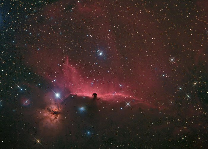 Astrophotography Greeting Card featuring the photograph The Horsehead Nebula by Charles Warren