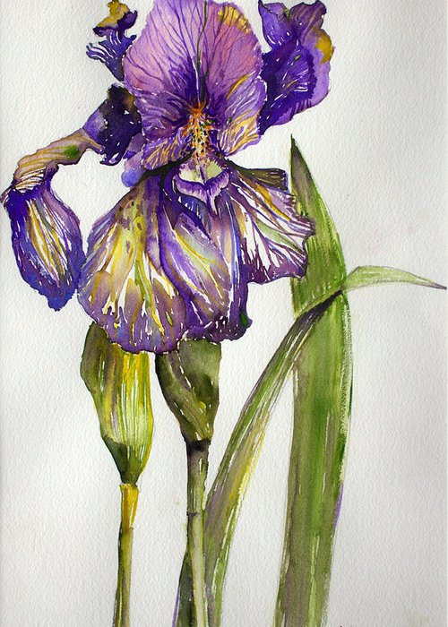 Flower Greeting Card featuring the painting The Iris by Mindy Newman