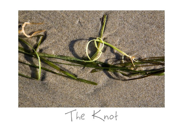 Beach Art Greeting Card featuring the photograph The Knot by Peter Tellone