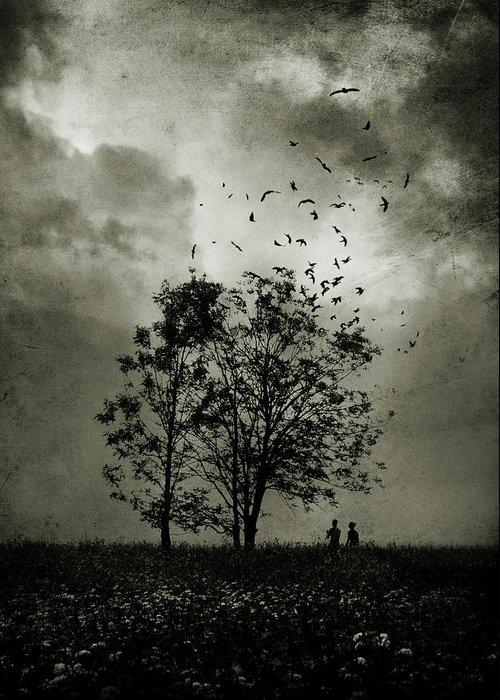 Tree Greeting Card featuring the photograph The Last Day by Cambion Art