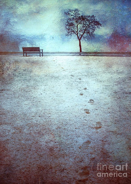 Bench Greeting Card featuring the photograph The Last Snowfall by Tara Turner
