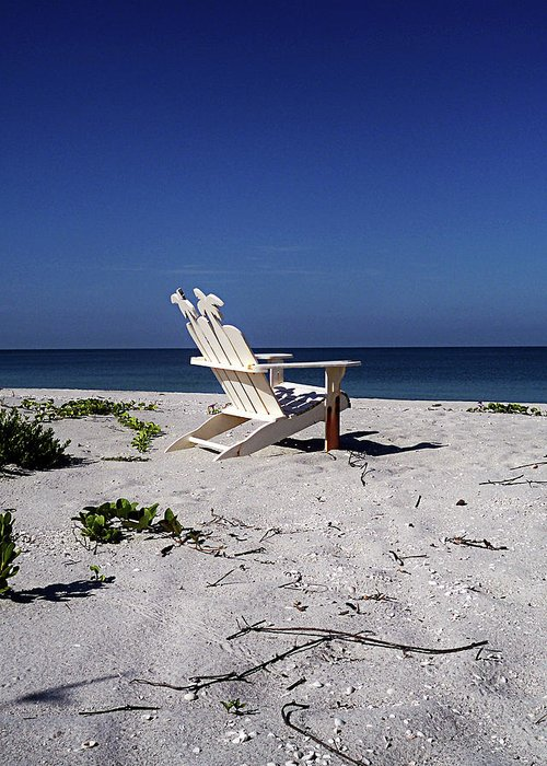 Florida Greeting Card featuring the photograph The Life Gp by Chris Andruskiewicz