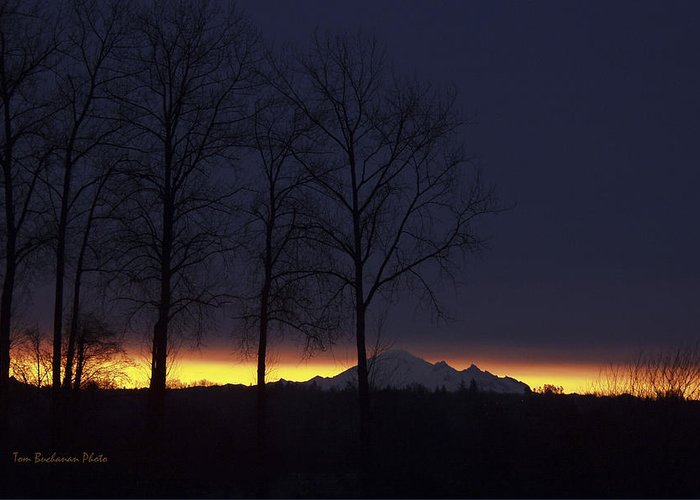Mount Baker Greeting Card featuring the photograph The Light On The Mountain by Tom Buchanan