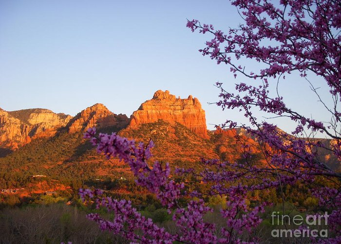 Sedona Greeting Card featuring the photograph The Light Within by Amy Strong