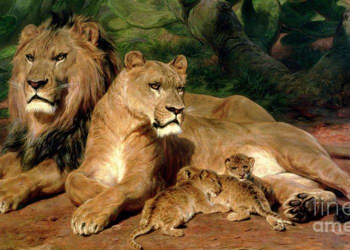 The Lions At Home Greeting Card featuring the painting The Lions At Home by Rosa Bonheur