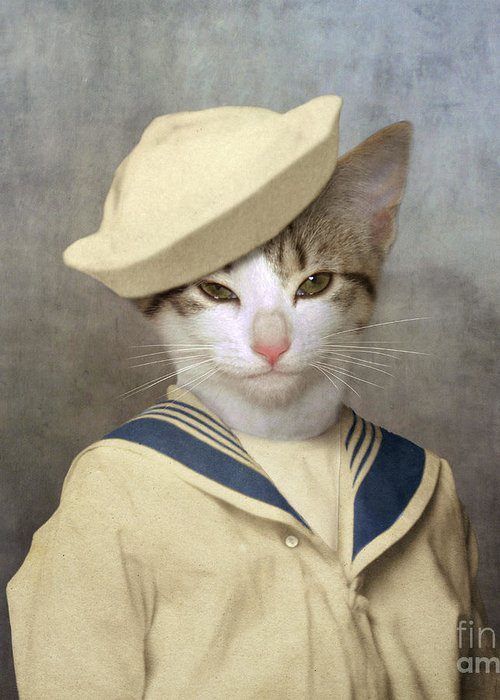 Sailor Hat Greeting Cards