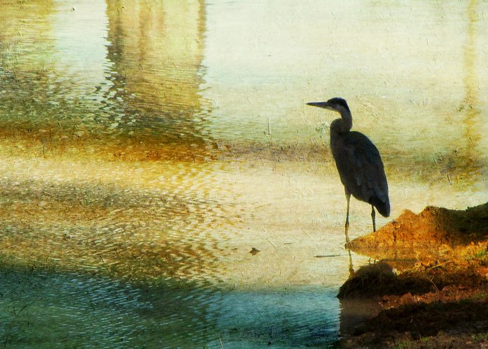 Blue Heron Greeting Card featuring the photograph The Lonely Hunter II by Amy Tyler