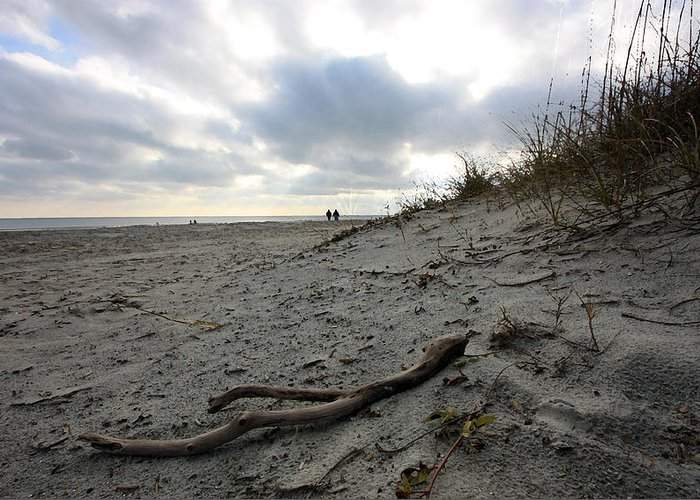 Sand Greeting Card featuring the photograph The Long Walk by Mary Haber