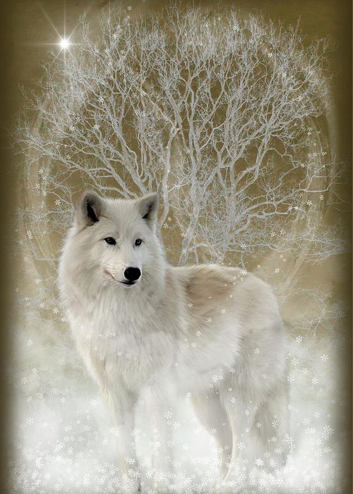 Fantasy Greeting Card featuring the photograph The Magical Wolf by Andrea Swiedler