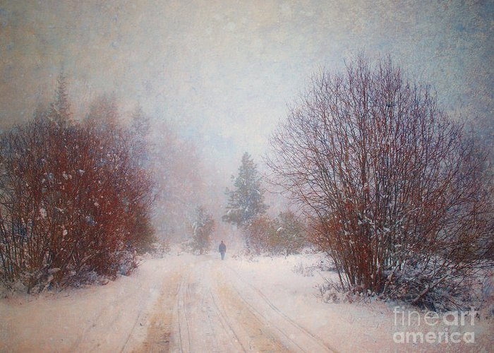 Snow Greeting Card featuring the photograph The Man In The Snowstorm by Tara Turner