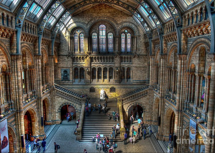 This Is An Hdr Of The Natural History Museum In London. Greeting Card featuring the photograph The Natural History Museum London Uk by Donald Davis