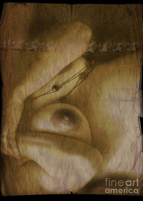 Nude Greeting Card featuring the photograph The Nude by Angel Ciesniarska
