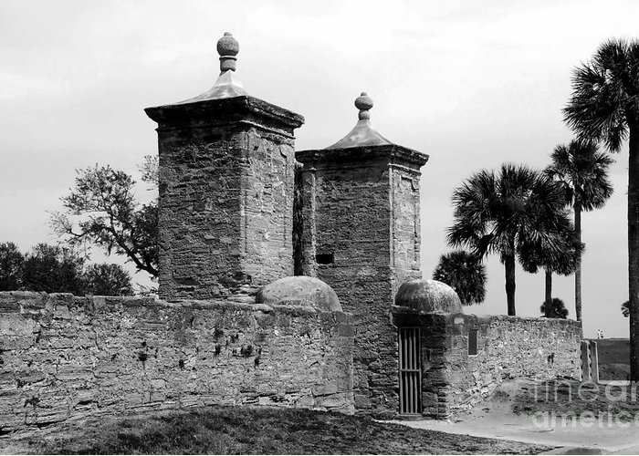 Saint Augustine Florida Greeting Card featuring the photograph The Old City Gates by David Lee Thompson