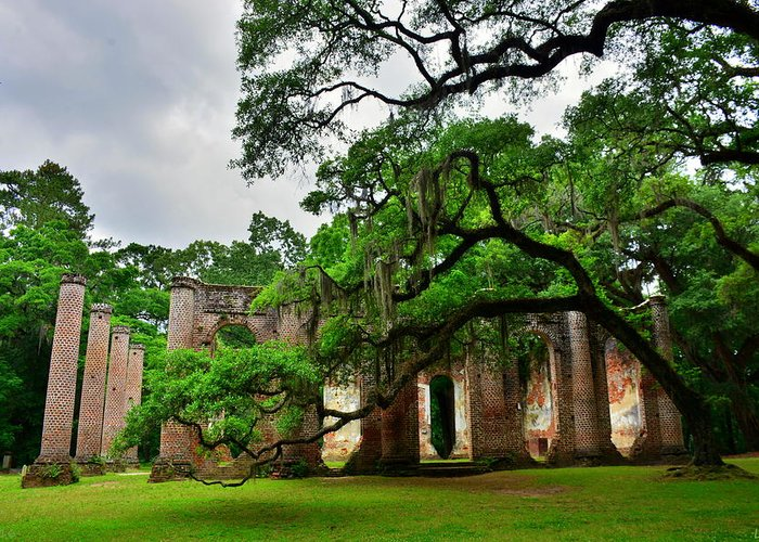 The Old Sheldon Church Ruins Greeting Card featuring the photograph The Old Sheldon Church Ruins by Lisa Wooten