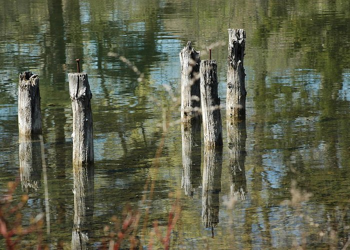 Landscapes Greeting Card featuring the photograph The Old Swimming Hole by LeeAnn McLaneGoetz McLaneGoetzStudioLLCcom