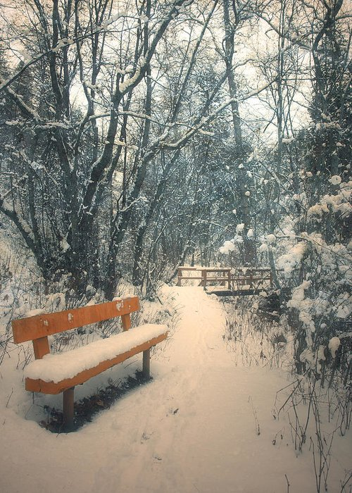 Trail Greeting Card featuring the photograph The Orange Bench by Tara Turner