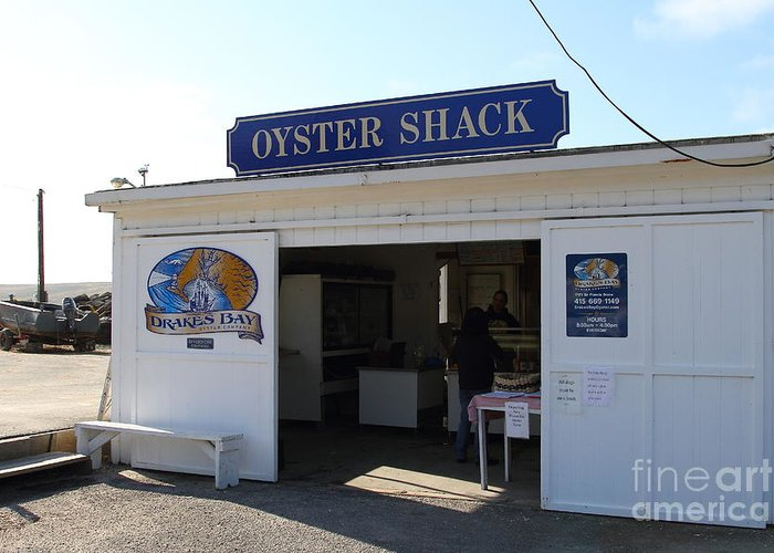 Oyster Greeting Card featuring the photograph The Oyster Shack At Drakes Bay Oyster Company In Point Reyes California . 7d9832 by Wingsdomain Art and Photography