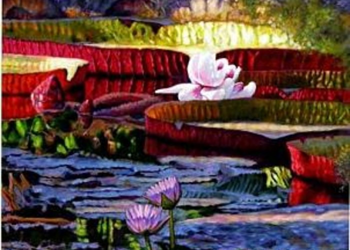 Shadows And Sunlight Across Water Lilies. Greeting Card featuring the painting The Patterns Of Beauty by John Lautermilch
