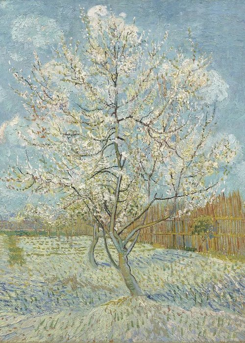 Greeting Card featuring the painting The Pink Peach Tree Arles, April - May 1888 Vincent Van Gogh 1853 1890 by Artistic Panda