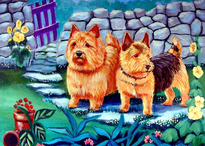 Norwich Terrier Greeting Card featuring the painting The Purple Gate - Norwich Terrier by Lyn Cook
