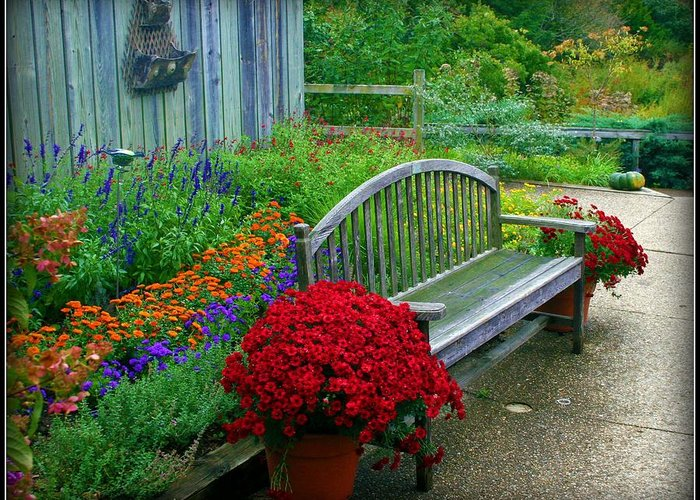 Garden Greeting Card featuring the photograph The Quiet Place by Elizabeth Babler
